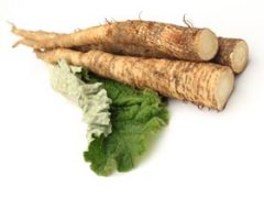 Burdock Root Tea Benefits