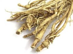 Astragalus Tea Benefits