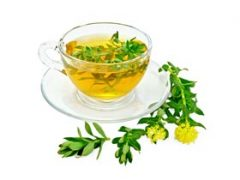 Rhodiola Rosea Tea Benefits