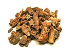 Sarsaparilla Tea Benefits