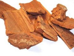 Yohimbe Bark Tea Benefits